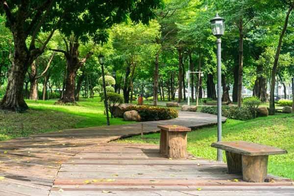 Parque de la ciudad de mexico